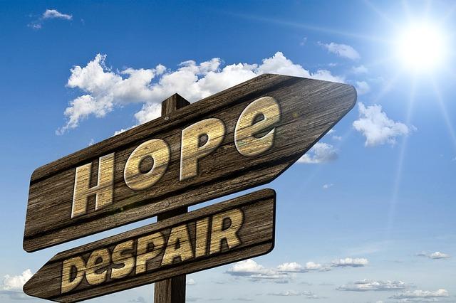 フランチャイジーの希望と絶望
